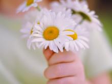 Praticare-gentilezza-a-casaccio-e-atti-di-bellezza-privi-di-senso